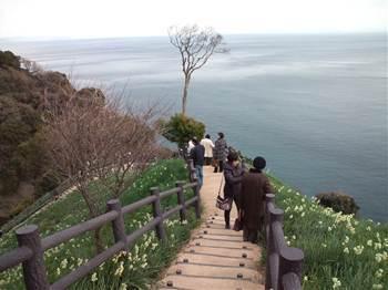 20120104水仙郷急2.jpg